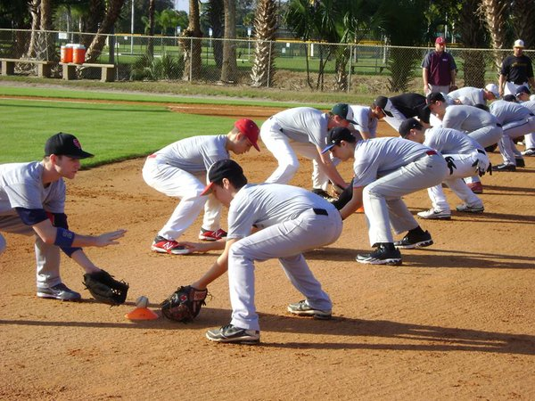 College scouting bureau baseball softball recruiting bios for Bureau college