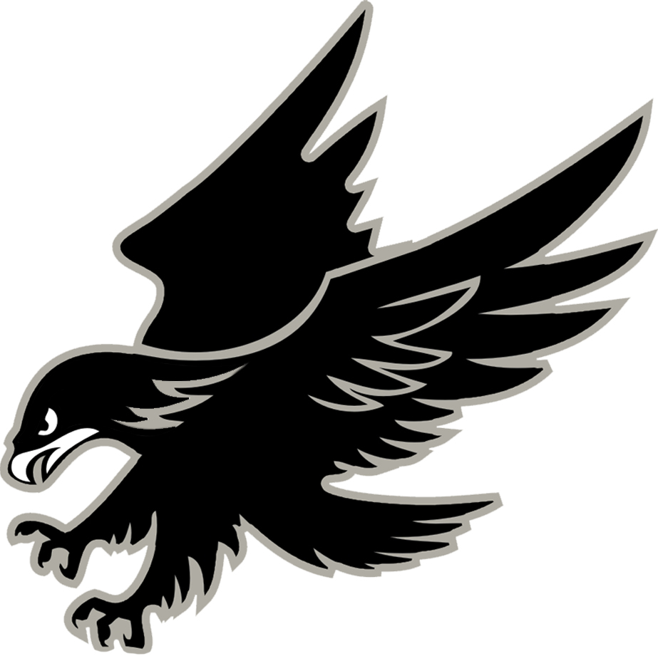 Displaying 14> Images For - Hawk Football Logo... Eagle Football Logo