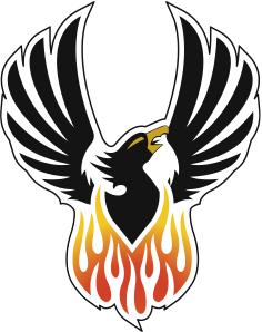 1000 Images About Phoenix Rises On Pinterest Phoenix