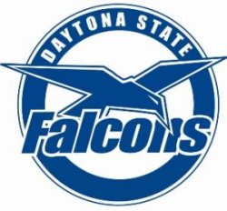 Daytona State Falcon Online | Share The Knownledge Daytona State College Online Class Photos