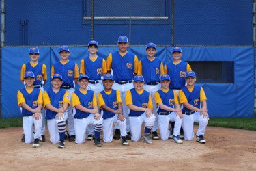 District 16/31 PA Little League Home Page