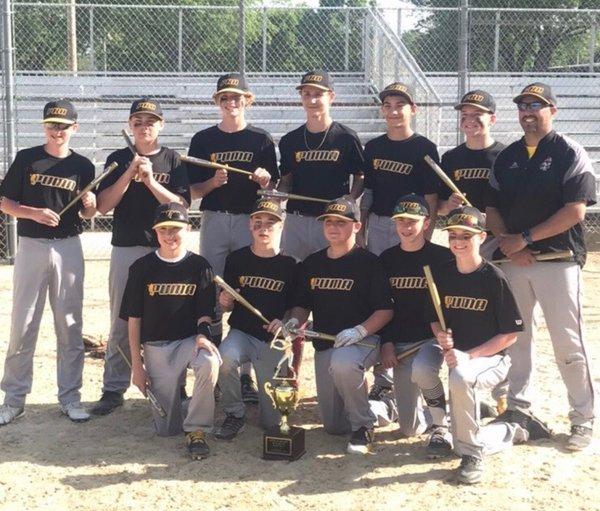 Puma Baseball Academy Home Page