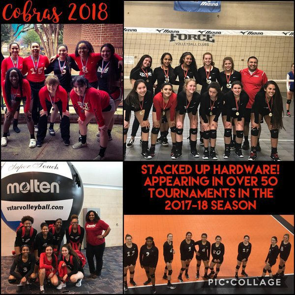 Cobras Volleyball Home Page